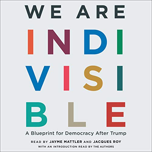 Couverture de We Are Indivisible