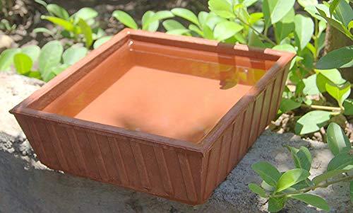 Tansa Art Earthen Pot Terracotta Bird Bath, Earth Brown (9X9-Inch)