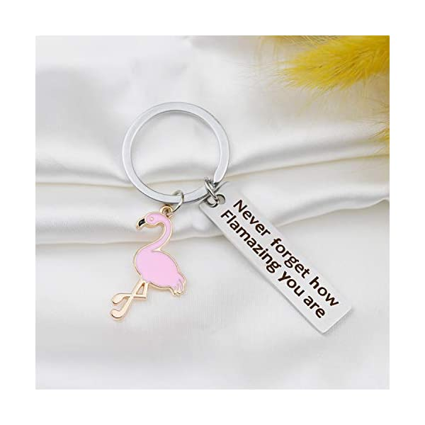 JIGAL Motivational Flamingo Keychain Never Forget How Flamazing You are Keychain Flamingo Lover Jewelry Gift for Family BFF Animal Lovers