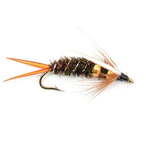 The Fly Fishing Place Double Bead Nymph Collection 1 Dozen Weighted Nymph Fly Fishing Flies - Set of 12 Flies Hook Size 10