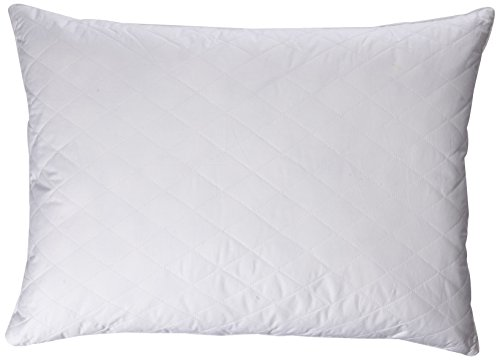 Blue Ridge Home Fashions K200506 Quilted Goose and Feather Down Pillow in White (Set of 2), Jumbo