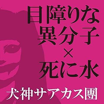 Mezawarinaibunshi Shinimizu