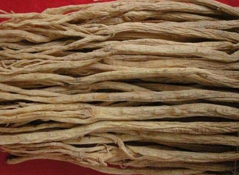 4 years warranty Astragalus Root Seasonal Wrap Introduction Extract Grams 10:1-5