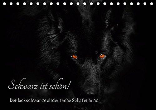 Schwarz ist schön! Der lackschwarze altdeutsche Schäferhund (Tischkalender 2019 DIN A5 quer): Der...
