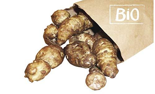 Topinambur Bio 1kg Sorte: Gute Gelbe winterhart frische Topinamburknollen schmecken leicht süßlich-nussig Knollen zum Verzehr und zum Pflanzen