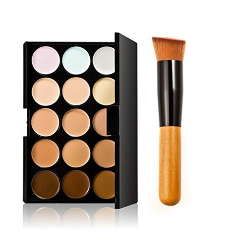 Danapp 15 couleurs de camouflage fond de teint, Palette de maquillage avec brosse