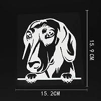 車のステッカーの装飾 15.2CMX15.9CMダックスフント車のステッカーチラッと覗く犬ビニールデカールブラック/シルバー (Color Name : Silver)