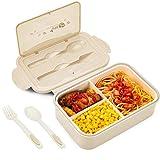 BIBURY Lunch Boxen, Auslaufsichere Brotdose Kinder und Erwachsene, Bento Lunch Boxen mit Besteck und 3 Fächern, Lebensmittelbehälter BPA-frei, mikrowellen und spülmaschinenfest (Braun)