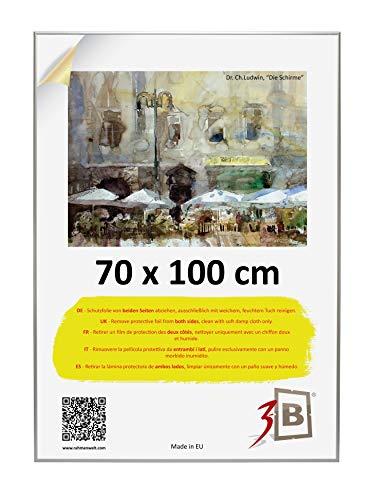 3-B Alu Poster Brushed - Großer Bilderrahmen - mit Polyesterglas und Schutzverpackung - Silber matt - 70x100 cm (Format B1)
