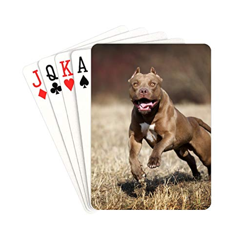 QIAOLII Fun Poker Cards American Pit Bull Terrier Decks of Playing Cards Unique for Kids & Adults Card Decks Games Standard Size