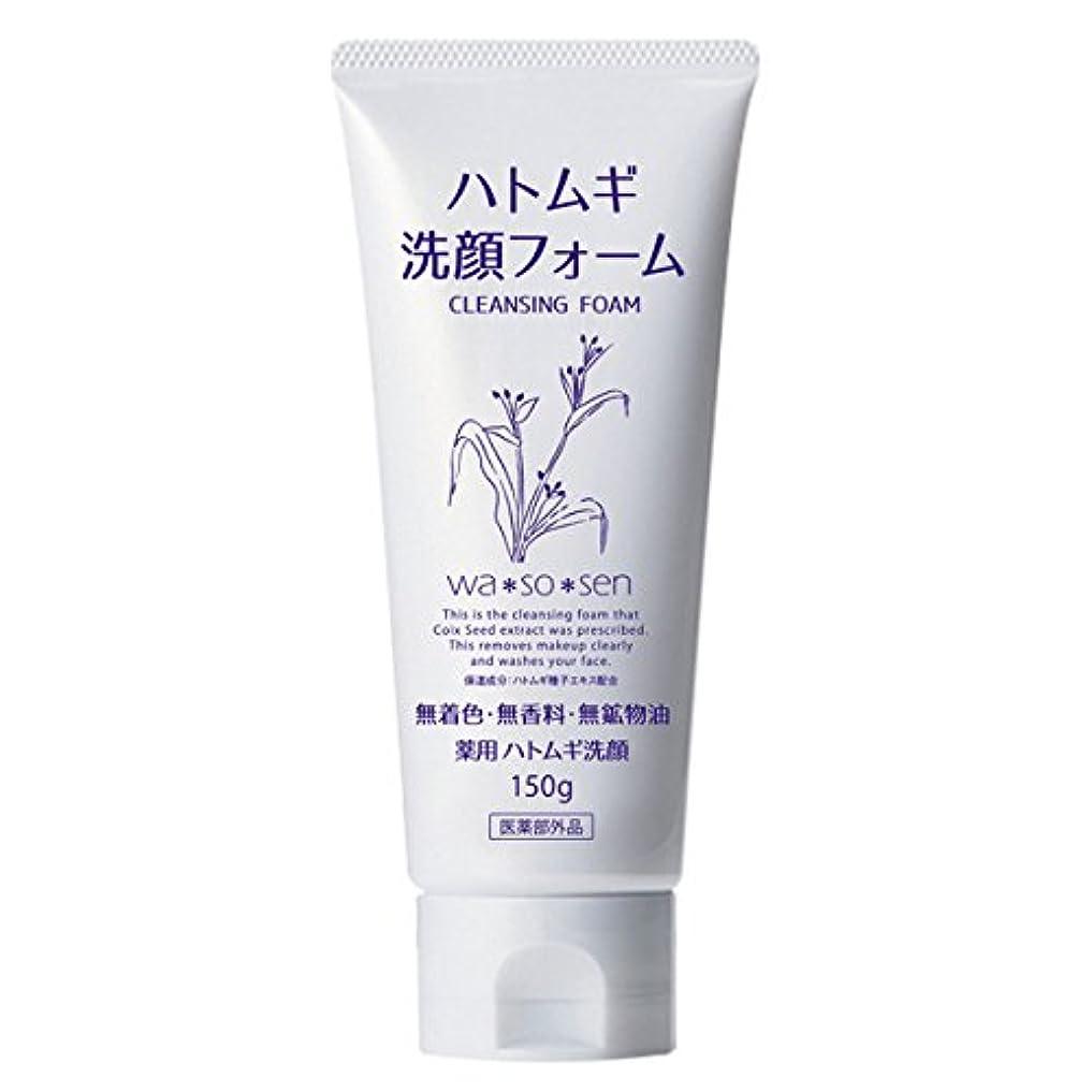 皮避けられないライター薬用ハトムギ洗顔フォーム (150g)