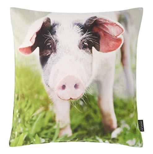 Proflax Kissenhülle Piggy   100 Natur - 40 x 40 cm