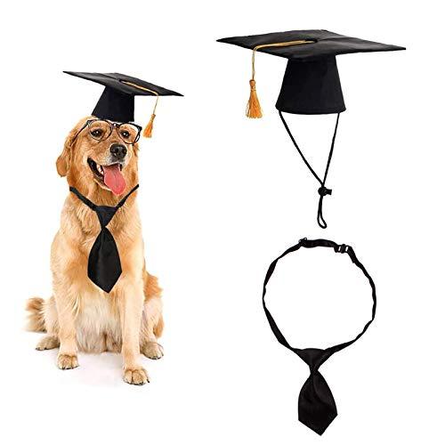 Nicoone Gorro de perro para graduación de mascotas, juego de corbata para disfraz de perro y gato