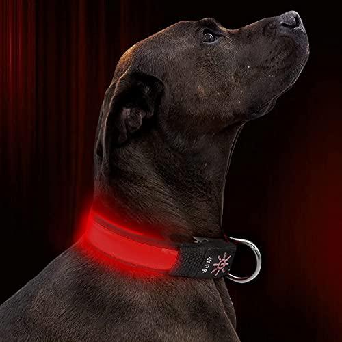 Collare Luminoso per Cani,Ricaricabile Tramite USB LED collare,Ultra Luminoso con 3 modalità D'ardore e Misura Regolabile Adatto per Tutti i Cani Gatti