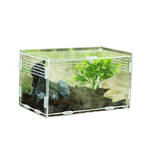 Transparent Acryl Terrarium, Feeding Box Behälter für Spide, Skorpion, Gottesanbeterin, Gehörnter Frosch, Käfer, Reptilien Lebensraum, Magnetverschluss und Anti-Escape-Design