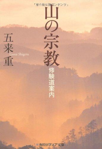 山の宗教 修験道案内 (角川ソフィア文庫)の詳細を見る