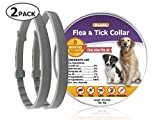 Best Flea Collar For Dogs - Duuda 2 Pack Dogs Flea and Tick Collar Review
