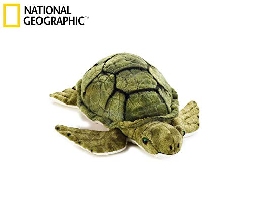 National Geographic - 8004332707349 - Peluche Tortuga Marina