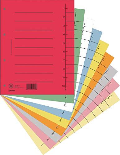 DONAU 8610001S-99 100er Pack Trennblätter/ Aus Recycling-Karton 250 g/qm mit Linienaufdruck für DIN A4 4-Fach Lochung Trennlaschen Trennblätter Ordner Register Kalender