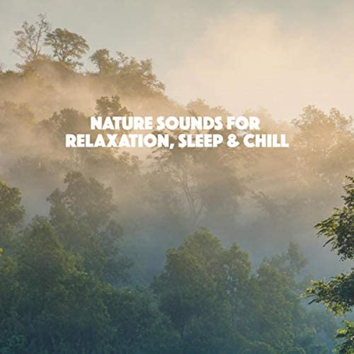 White Noise Research, Sounds of Nature Relaxation & Nature Sounds Artists