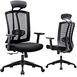 RONGBUK Home Office Chair Ergonomic Desk Chair Breathable Mesh Computer Chair with Lumbar Support Armrest Executive Rolling Swivel Adjustable Task Chair for Women Adults, Black