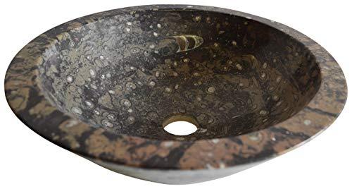 Große Oval Geschnitzte braune Fossilien sinken mit Ammonoiden und Orthoceras Fossilien durchgehend aus dem Paläozoikum 400 Millionen Jahre - W38 D28 H 15 Cm -