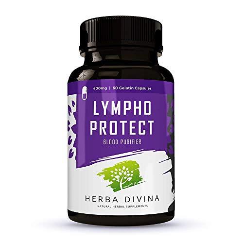 Herba Divina - LYMPHO PROTECT   Unterstützt Normale HDL Cholesterin Werte   100{f3566dd9bba06b77f4cde7d3f358ce2b10dd592ad7c174d7994c877e3de4f1c4} BIO Kräuter Inhaltsstoffe   60 Kapseln