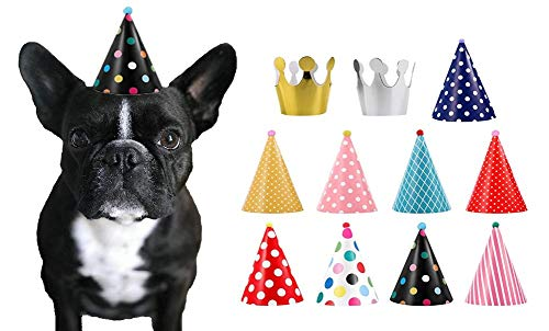 CBM Dog Party Hat Set - Dog Birthday Party - Hats and Crowns Party Time - 11pcs