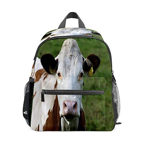 Mochila infantil para niños de 1 a 6 años de edad, mochila perfecta para niños y niñas de granja de animales