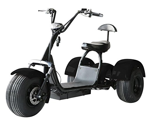Our #8 Pick is the eDrift UH-ES395 Fat Tire Electric Trike