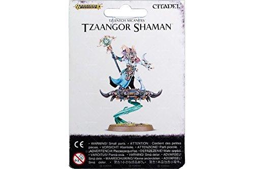 """Games Workshop 99070201021"""" Tzaangor Shaman Action Figure"""
