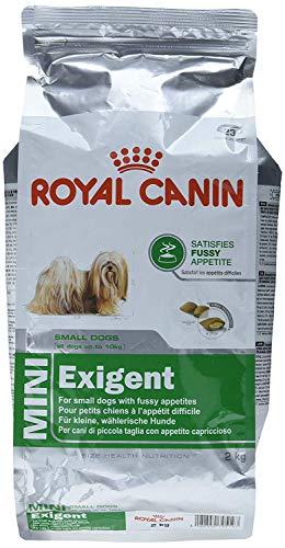 Royal Canin Size Mini Exigent, 1er Pack (1 x 2.04 kg)