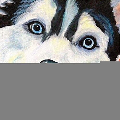 DIY 5D Diamond Painting Full Kit Full Drill Diamond Embroidery Dog 60x60cm/24x24in Square Drill Pictures Crystal Rhinestone Cross Stitch Diamond Art Painting Craft for Home Wall Decor U1716