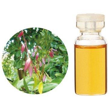 Aroma Japan Import Tree of Life Herbal Life Essential Oil 3ml - Cinnamon Leaf (Harajuku Culture Pack)