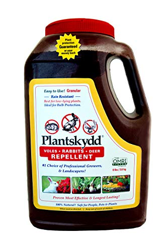 Plantskydd Animal Repellent - Repels Deer, Rabbits, Elk, Moose, Hares, Voles, Squirrels, Chipmunks and Other Herbivores; Organic Granular — 8 LB Shaker Jug (PS-VRD-8)
