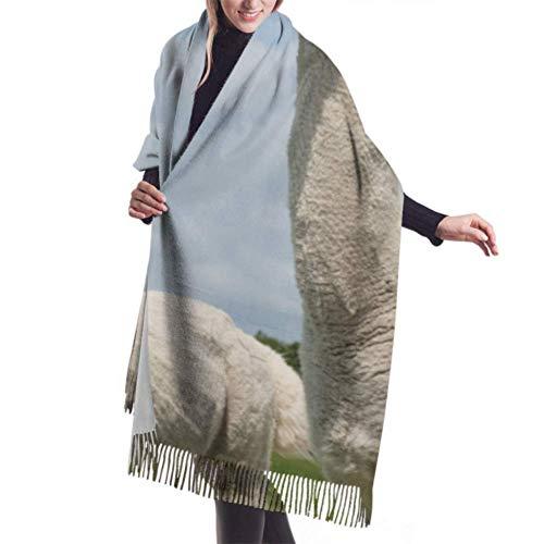 VJSDIUD Bufanda chal 27'x77' Lightweight Scarf Men Close Up Portrait Of Two Cute Alpacas Designer Cashmere Scarf Cheap Scarf Stylish Large Warm Blanket