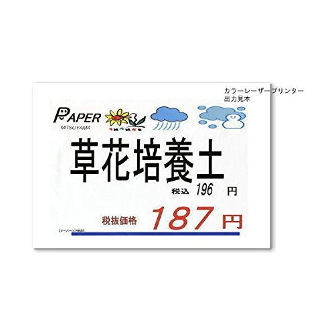 に応じて同意するオープニングペーパーミツヤマ カラーーザー用耐水紙 オーパーMDP F220 A3 (25枚)