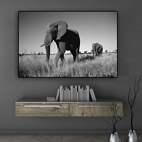 FXBSZ Elefant leinwand malerei wand künstler dekoration wohnzimmer dekoration malerei schlafzimmer dekoration malerei druck rahmenlose 20x30 cm