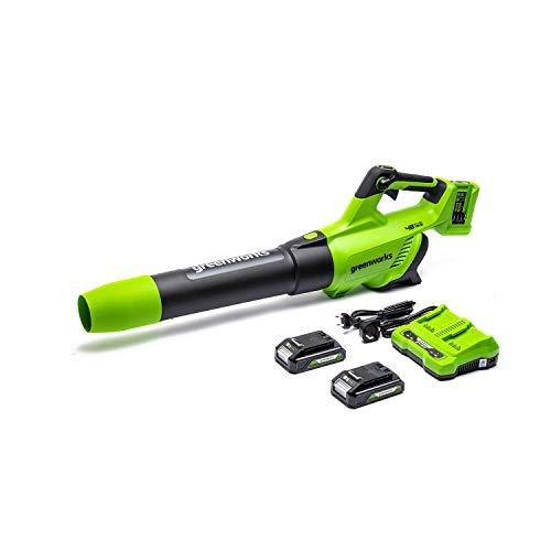 Greenworks 2 x 24 V (48 V) Soplador inalámbrico, Velocidad del aire 193 KM / H, Volumen de aire 900 M³ / H, Velocidad variable (con 2 baterías de 2 Ah y cargador)