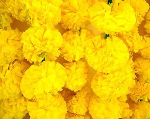 Nexxa 5 Feet Long Strands Light Yellow Marigold Garlands, Flower Garland, Indian Wedding Flowers, Diwali Marigold, Set of 5, Party Decor, Wedding, Deepavali