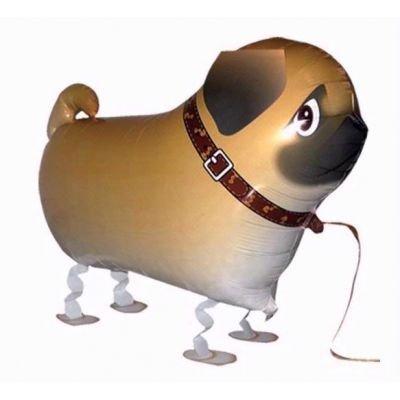 Mops Fuß Haustier Hund Geburtstags-party Ballon Airwalker Junge Madchen Geschenk