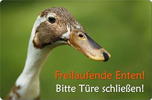 +++ Indische LAUFENTE Ente - Alu SCHILD Stallschild Boxenschild Tor - NTE 02 QF