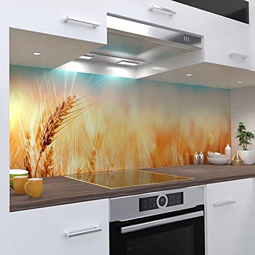 One-Wheel | selbstklebende Küchenrückwand | 400x60 cm harte PVC Folie | Wandtattoo für Fliesenspiegel Design Natur Gelb | Motiv: Weizen