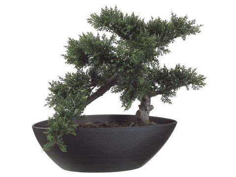 Silk Tree Warehouse Company Inc One 14.5 inch Artificial Cedar Cypress Bonsai Topiary Tree Indoor Outdoor UV Rated