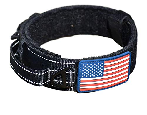 Dog Collar With Control Handle
