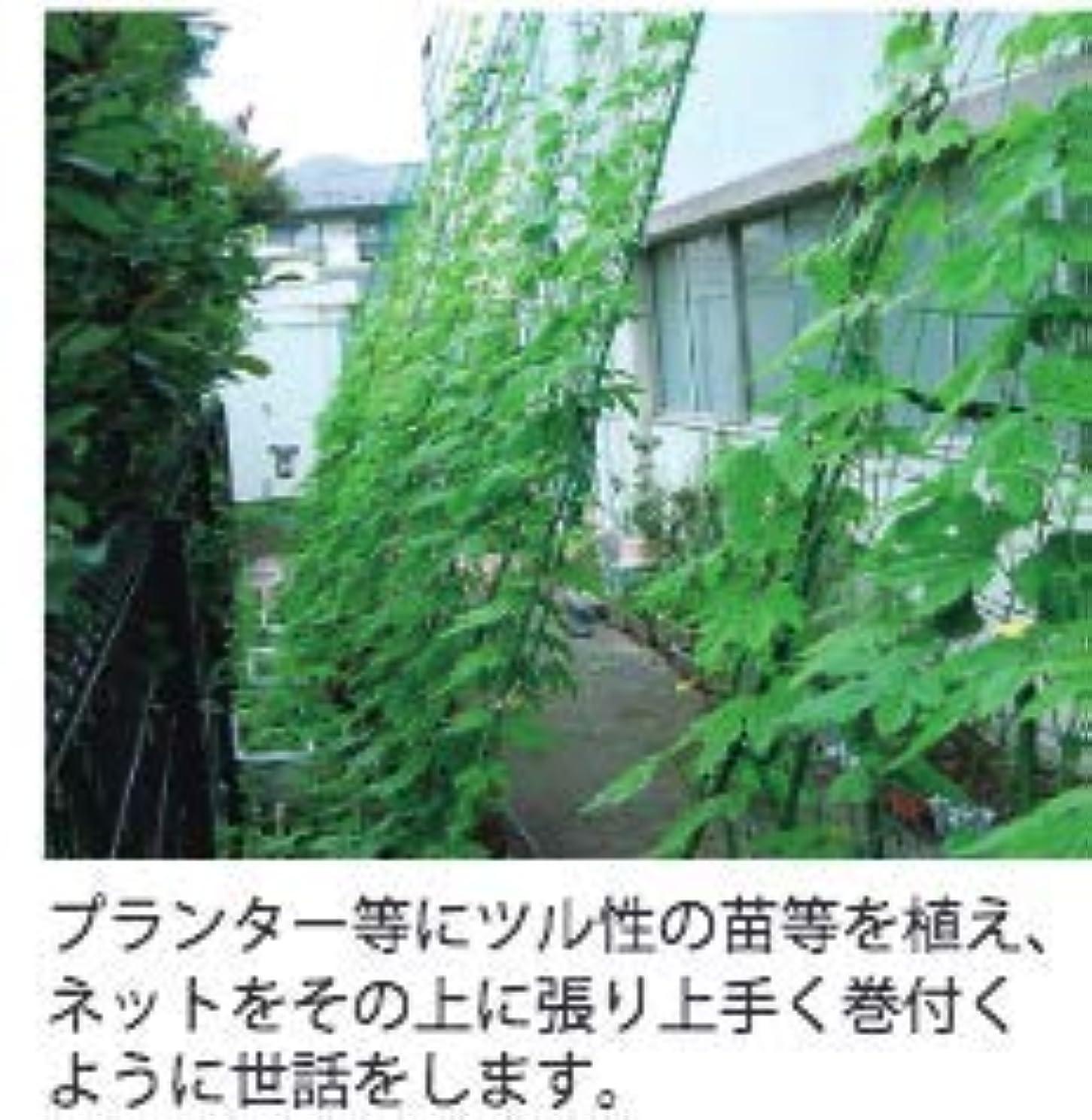 絶滅した金属叱る壁面緑化ネット 丈夫長持ち上質 1.8×5.4m 色 グリーン 日除け グリーンカーテン 数年使える 日本製 特注も承ります 保育学校用品