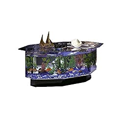 Midwest Tropical Fountain Aqua Coffee Table Aquarium Tank