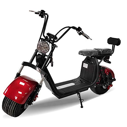 1500W Double Seats Electrical Scooter with 2 PCS 20Ah Removable Batteries and Large Tires