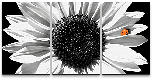 wall26 - Sunflower in Black and White - Canvas Art Wall...