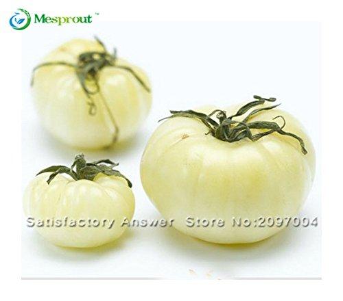 Nouvelle arrivee! 100 graines / Pack, Rare semences de légumes Blanc Tomate Belyy Gigant - White Beefsteak Heirloom Seed
